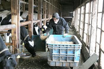 有用菌を生かす牛乳を作る西井牧場